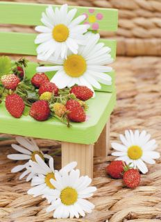 Postcard Aromatic strawberry